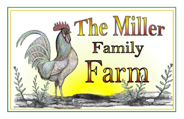 Rooster Family Farm