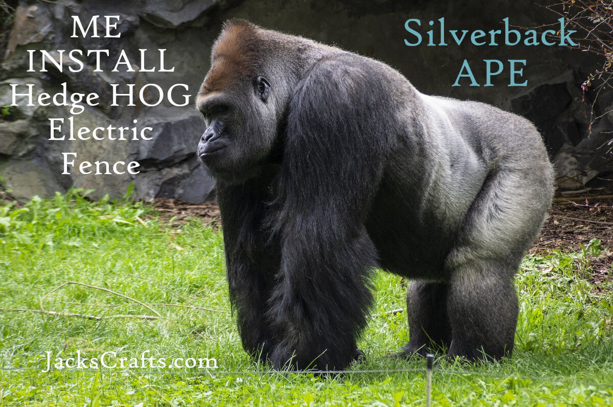 Silverback Ape Electric Fence for Hedge Hogs